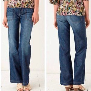 Anthropologie Pilcro Carpenter Jeans Size 28